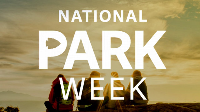 8 Ways to Support National Parks During National Park Week